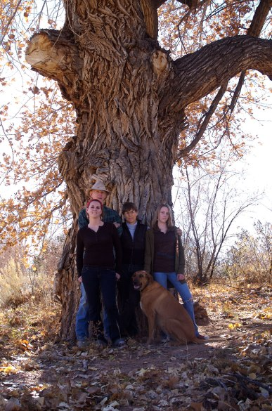 Family-Cottonwood-Tree