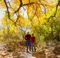 Tom-Michelle-Yellow-Leaves-