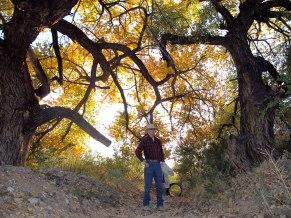 Tom-Shade-of-Cottonwood-Tree